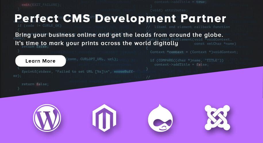 Perfect CMS Development Partner