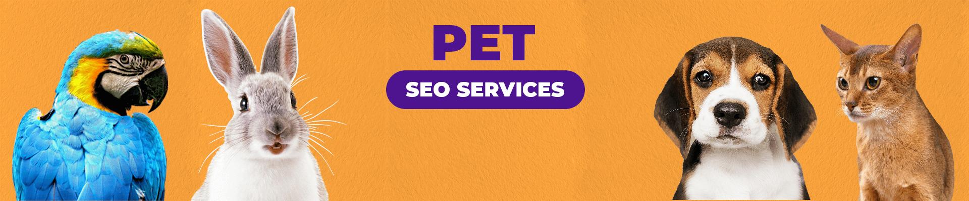 Best Pet SEO Services Company   Pet SEO Expert For Hire